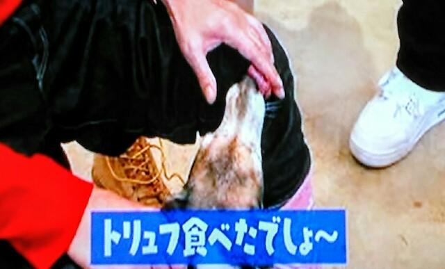 f:id:kitafumi:20170619130259j:image