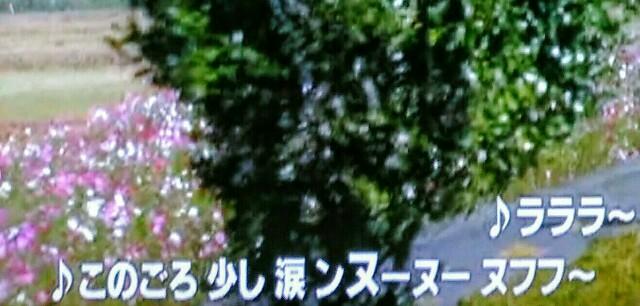 f:id:kitafumi:20170911121736j:image