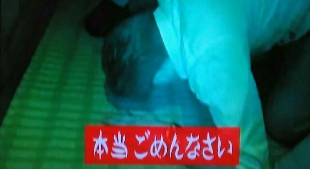 f:id:kitafumi:20171018121727j:image