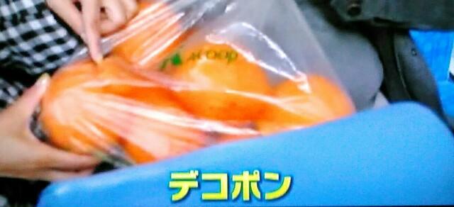 f:id:kitafumi:20180615105018j:plain