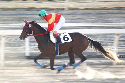 f:id:kitagawa-stable:20101103014500j:image