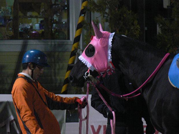 f:id:kitagawa-stable:20101103021218j:image