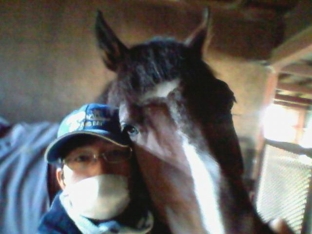 f:id:kitagawa-stable:20101114024445j:image