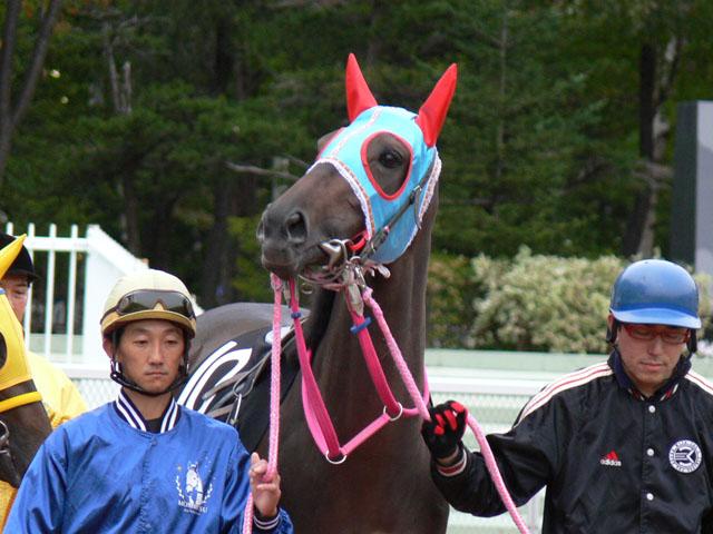 f:id:kitagawa-stable:20101114031742j:image