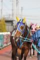 f:id:kitagawa-stable:20110513185410j:image:medium