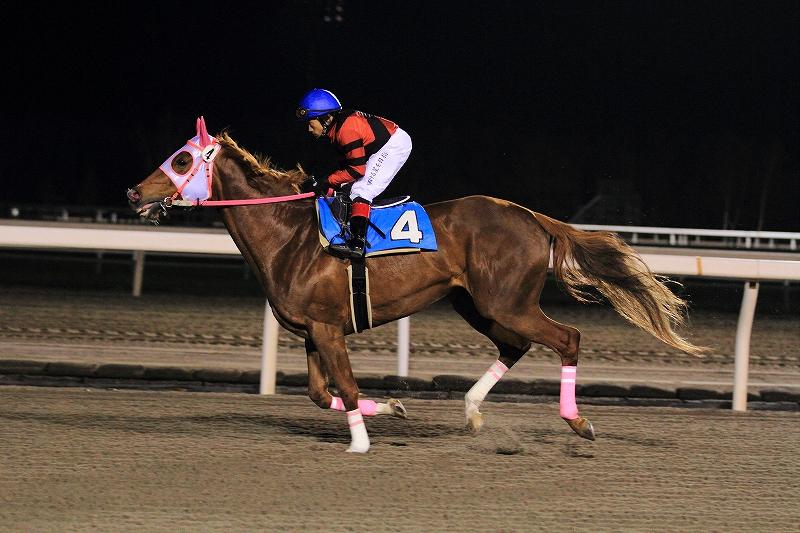 f:id:kitagawa-stable:20120510015214j:image