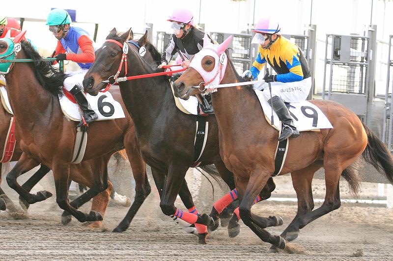 f:id:kitagawa-stable:20120510015218j:image