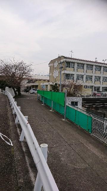 f:id:kitagawa-tatai0405:20190408083754j:image
