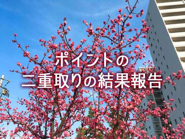 f:id:kitahana_tarosuke:20180308010628j:plain