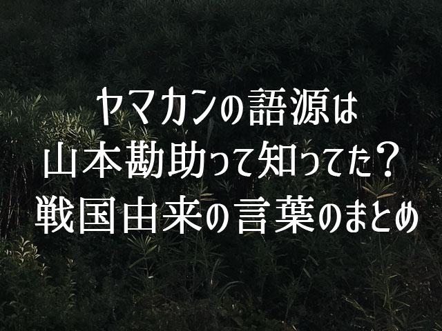 f:id:kitahana_tarosuke:20180417004450j:plain