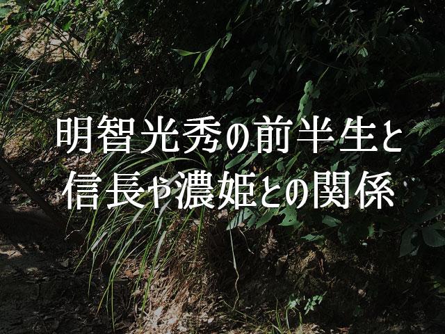 f:id:kitahana_tarosuke:20180421005954j:plain