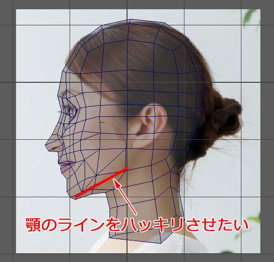 f:id:kitahana_tarosuke:20180617213828j:plain