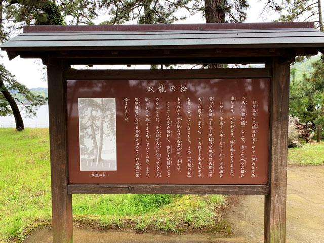 双龍の松の案内板