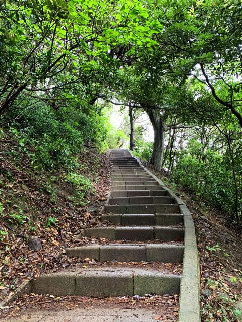 遊歩道の石段
