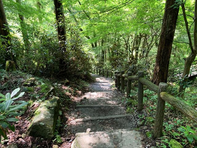 付知峡 下り階段