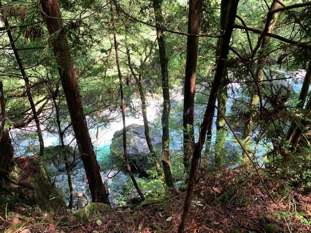 付知峡 木の隙間からの清流