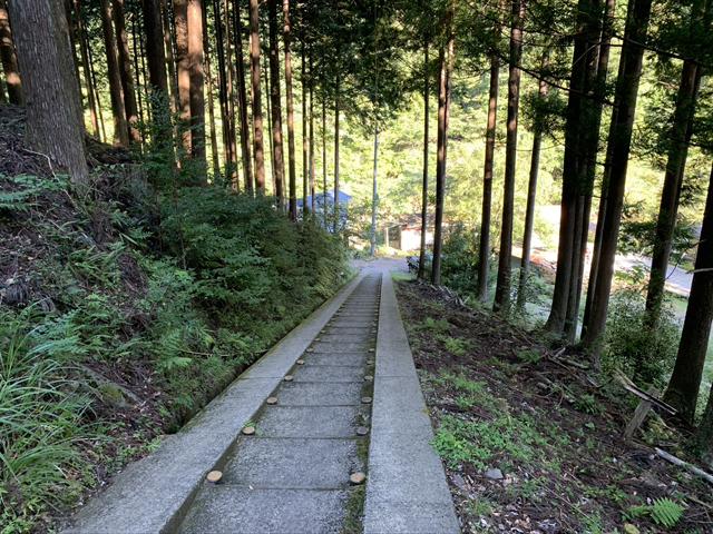 小又川バンガローの階段