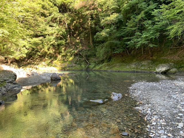 朝の小又川