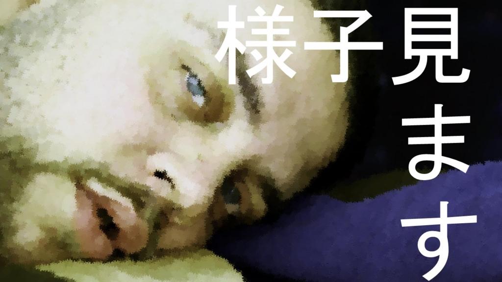 f:id:kitahashi-ryoichi:20150831212620j:plain