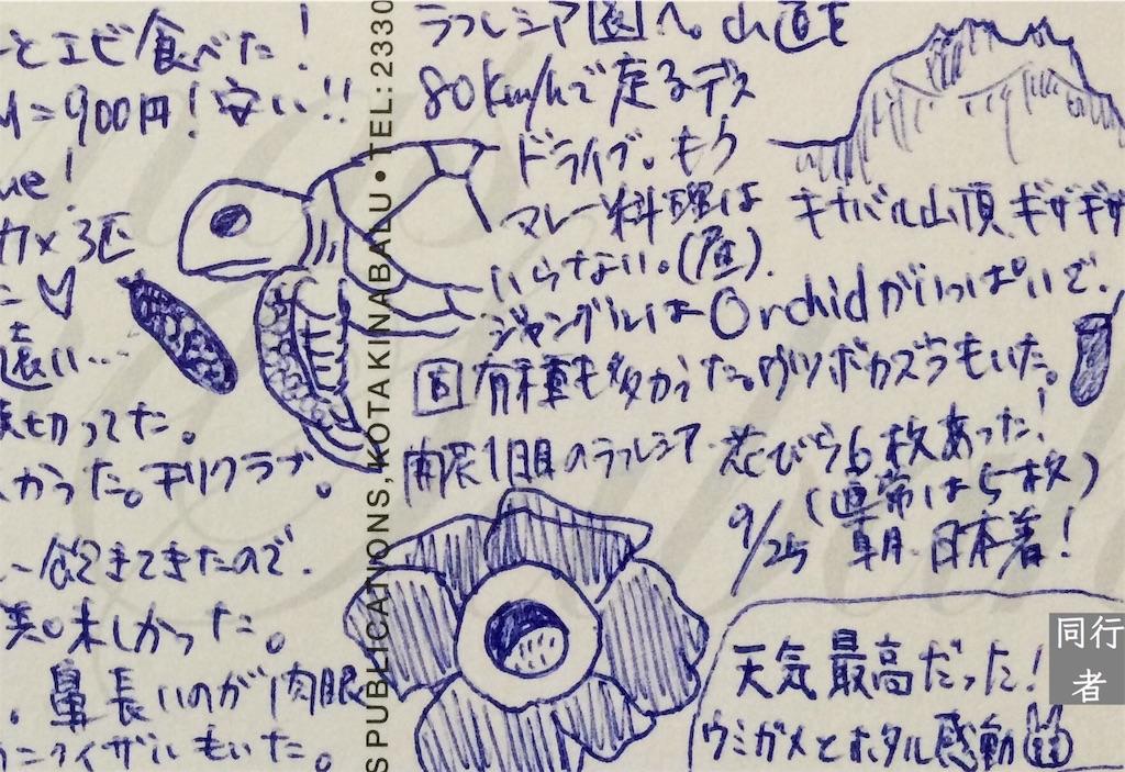 f:id:kitahonami:20161129192326j:image