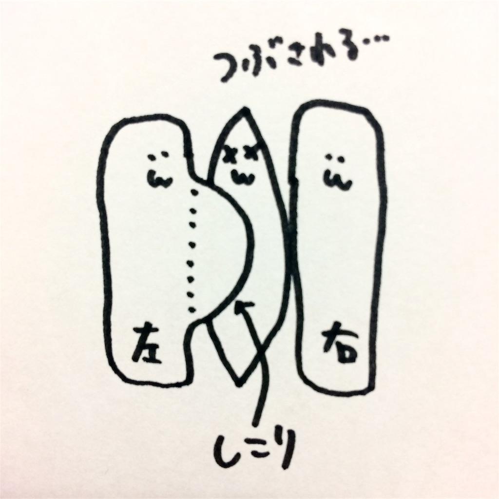 f:id:kitahonami:20161205194609j:image