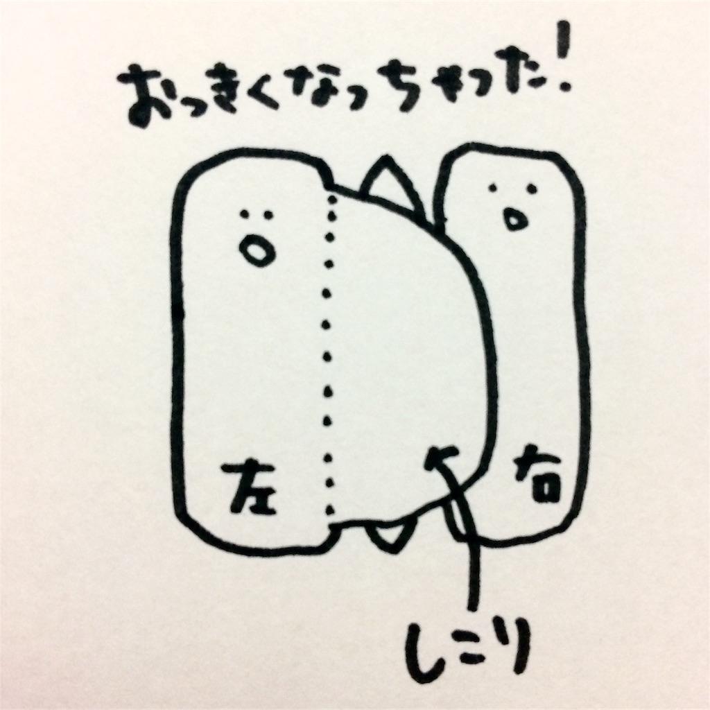 f:id:kitahonami:20161205194648j:image