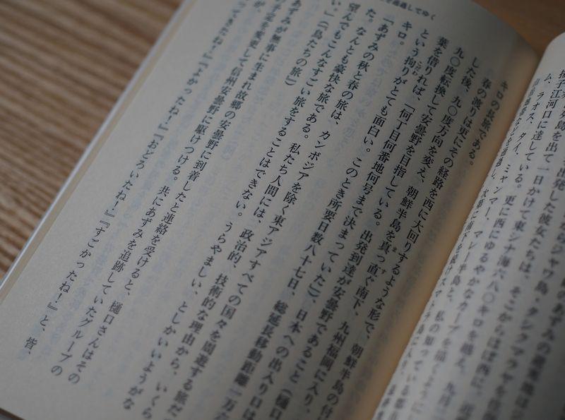 f:id:kitakaze2018:20210606233335j:plain