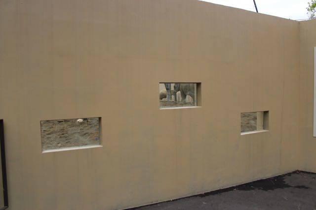 札幌円山動物園 ゾウ のぞき窓