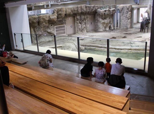 札幌円山動物園 ゾウ 陸のステージ