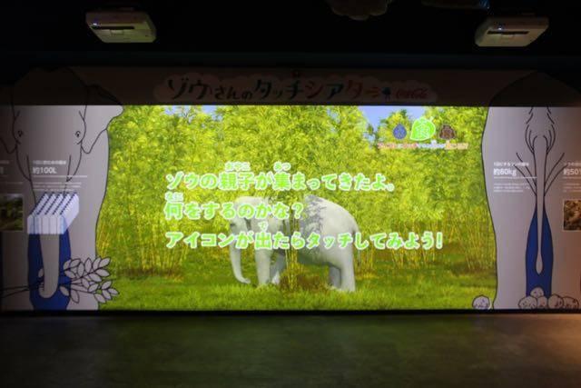 札幌円山動物園 ゾウのタッチパネル