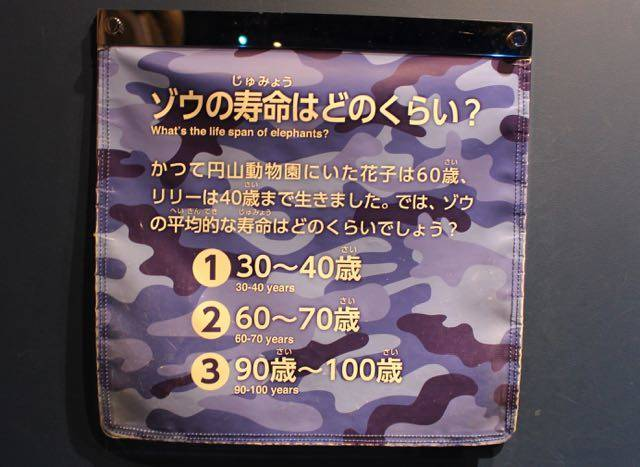 札幌円山動物園 ゾウ クイズ