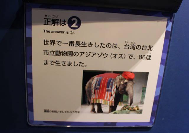 札幌円山動物園 クイズ解答