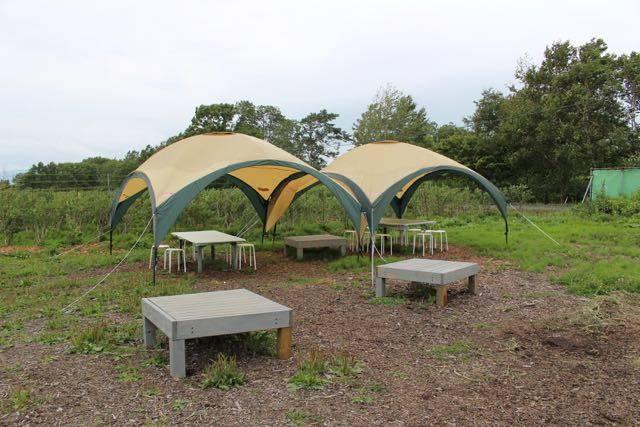 ブルーベリーさっぽろ テントスペース
