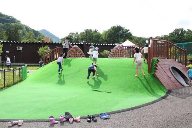 円山動物園 プレーリードッグの巣穴