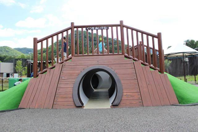 円山動物園 プレーリードッグの横穴