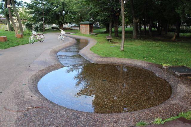 発寒3条泉緑地 遊水路