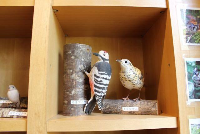 支笏湖ビジターセンター 鳥の置物