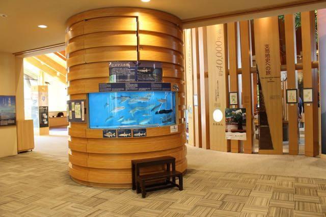 支笏湖ビジターセンター ひめます