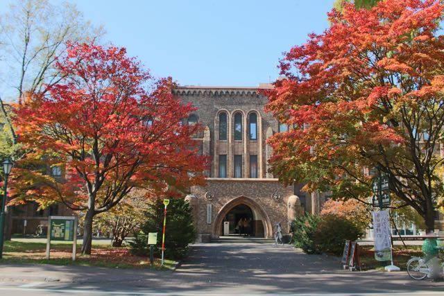 北海道大学博物館