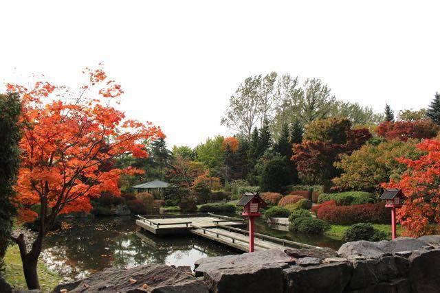 日本庭園 全景