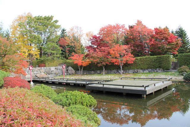 日本庭園 湖面