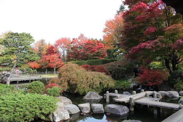日本庭園あずまや