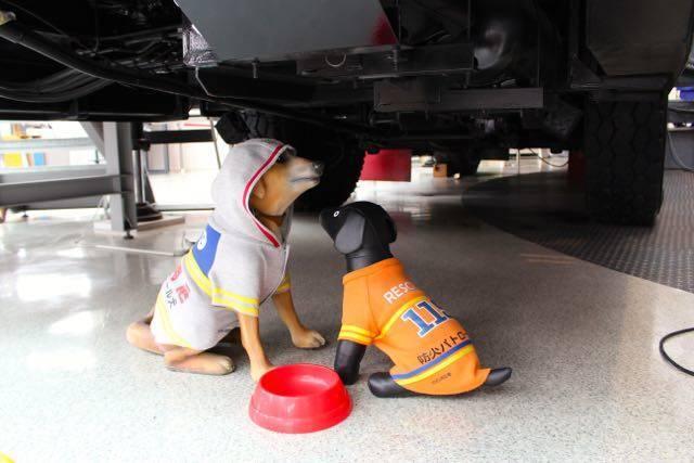札幌市民防災センター 救助犬