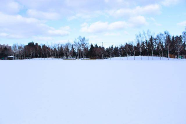 農試公園 圧雪広場
