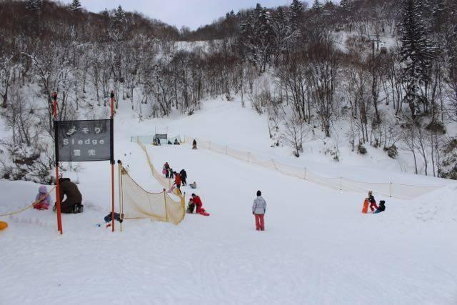 札幌国際スキー場 そり遊び