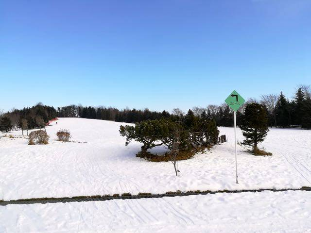 川下公園 なだらかなスキースロープ