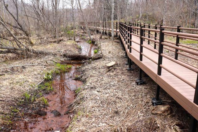 西岡公園 新しい木道