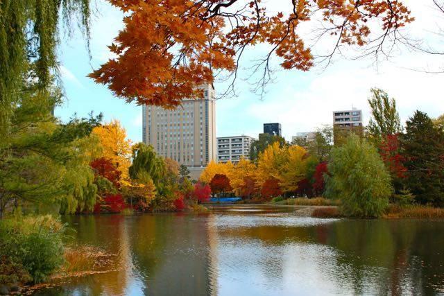 中島公園 紅葉