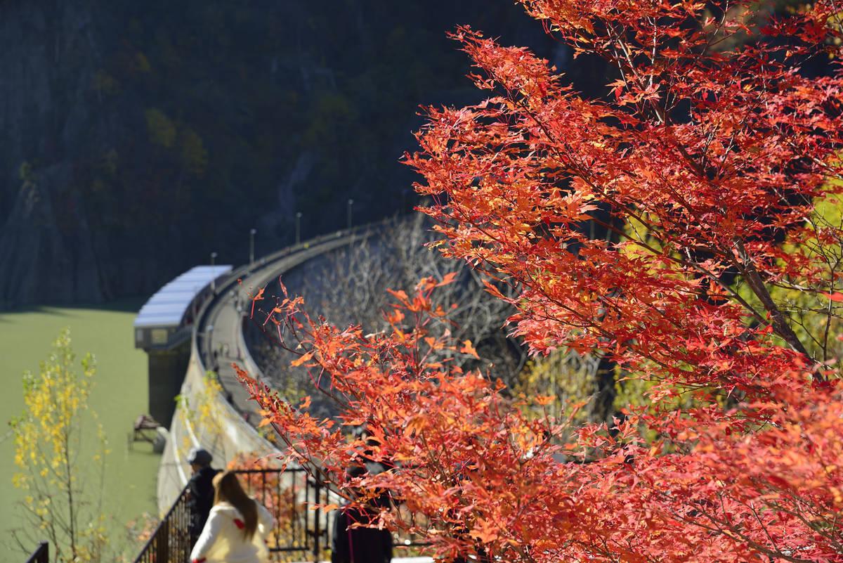 豊平峡ダム 紅葉
