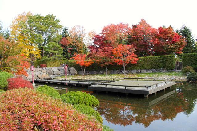 百合が原公園 紅葉